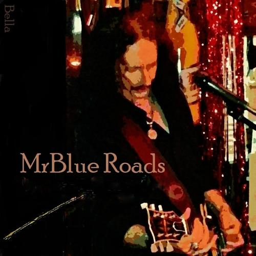 MrBlue Roads Live Entertainment Corporate Venue Party Events