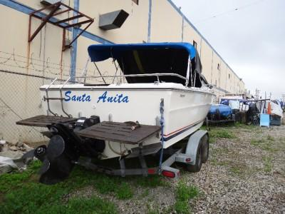 SEARAY BOAT SRV 220 1974 WITH TRAILER