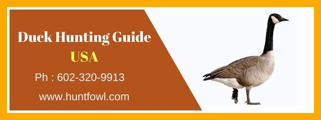 Best Duck Hunting Guide USA