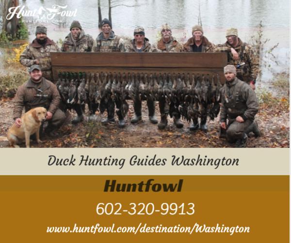 Duck Hunting Guides Washington