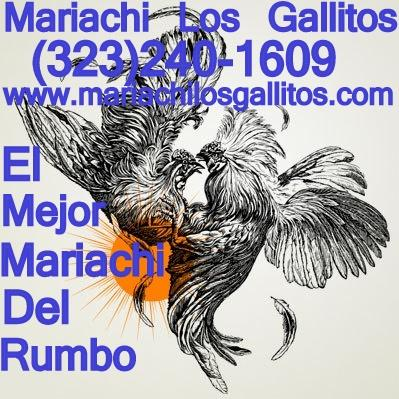 Mariachi Los Gallitos