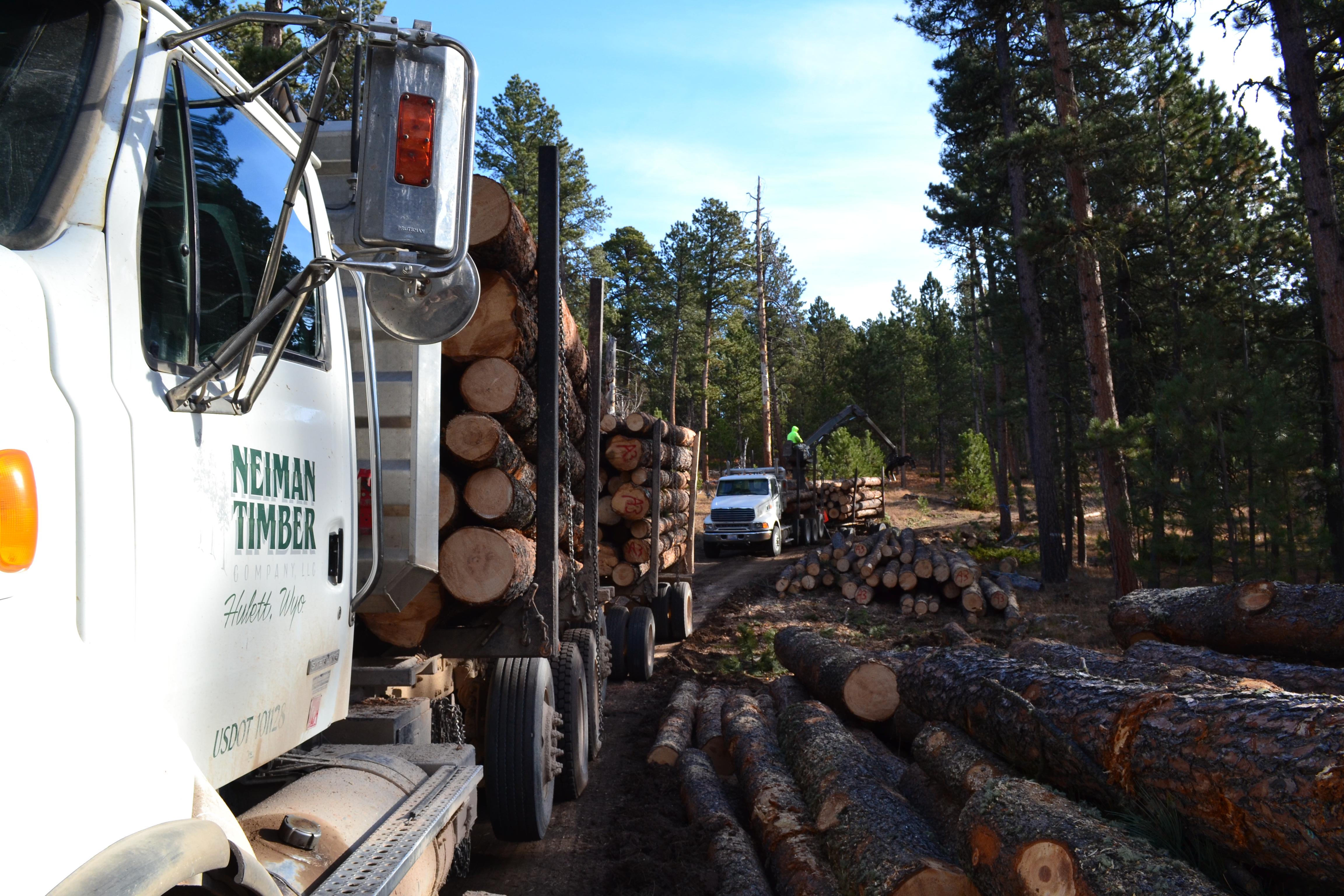 Altergott Forestry, LLC
