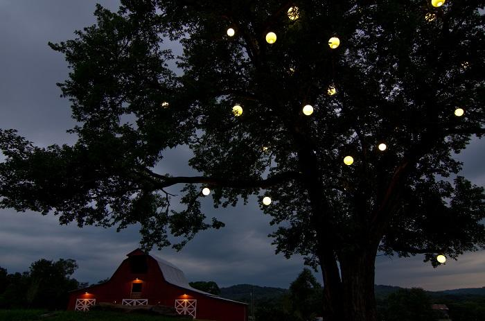 Outdoor Lighting Perspectives of Nashville