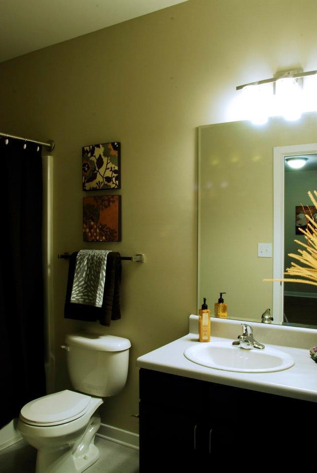 $675 Studio Apartment for rent