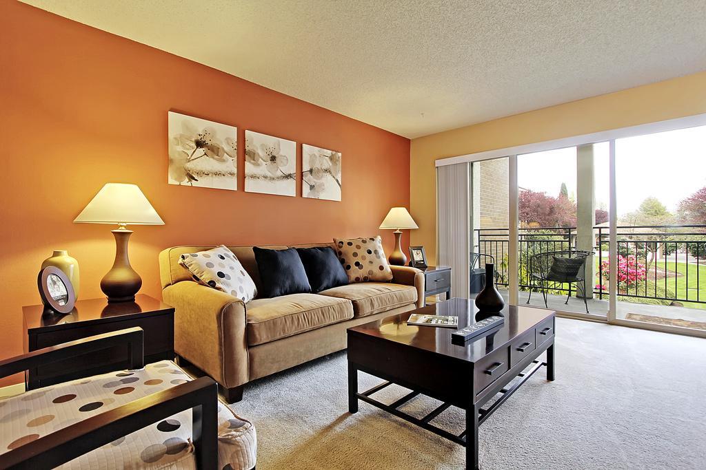 $1275 Studio Apartment for rent