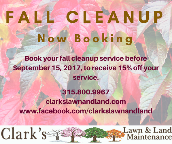 Fall Clean Up and Leaf Removal