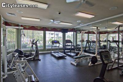 $1370 Three bedroom Apartment for rent