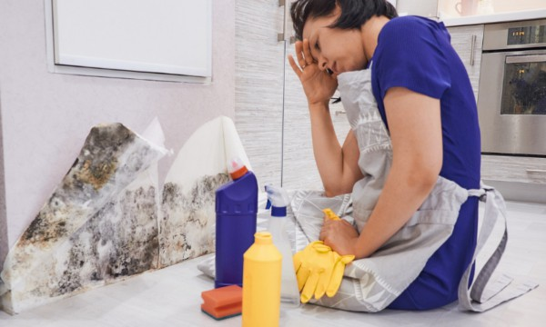 Hoarding Cleanup MN | Disaster Cleanup WI | Mold Remediation MN | Basement Flooding