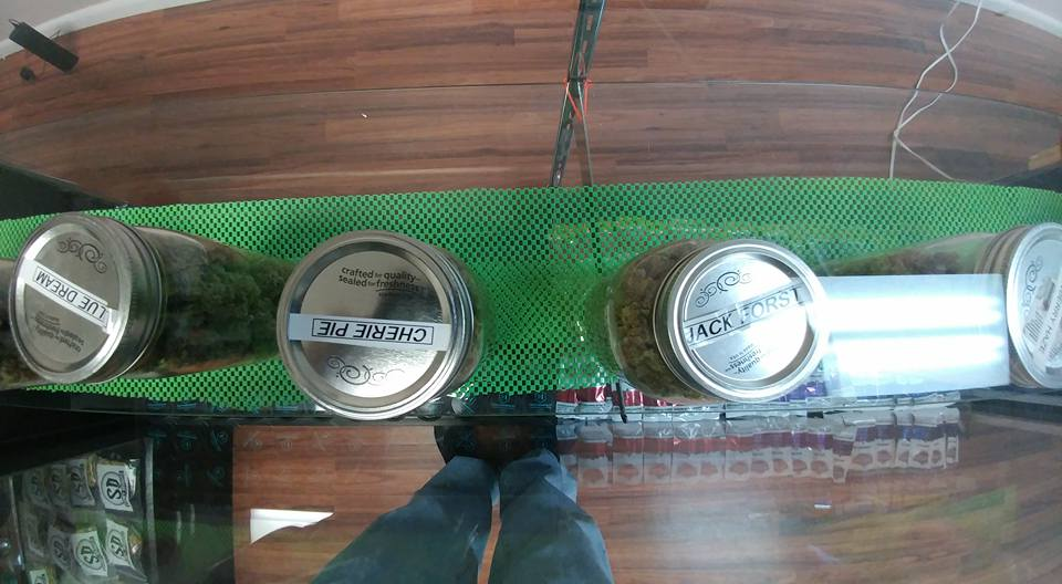 Care Giver for 420 Patience OG , Pot,Bud