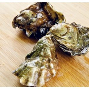 On Dryseafood.net Buy Fresh Oysters Online
