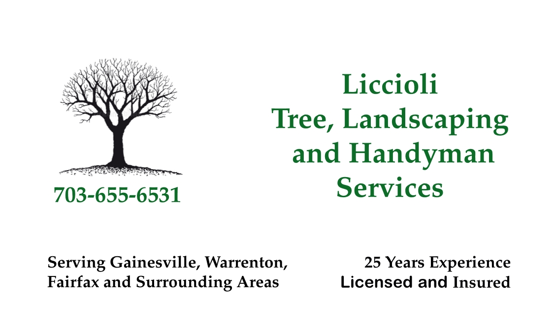 Liccioli Tree, Landscaping and Handyman Services