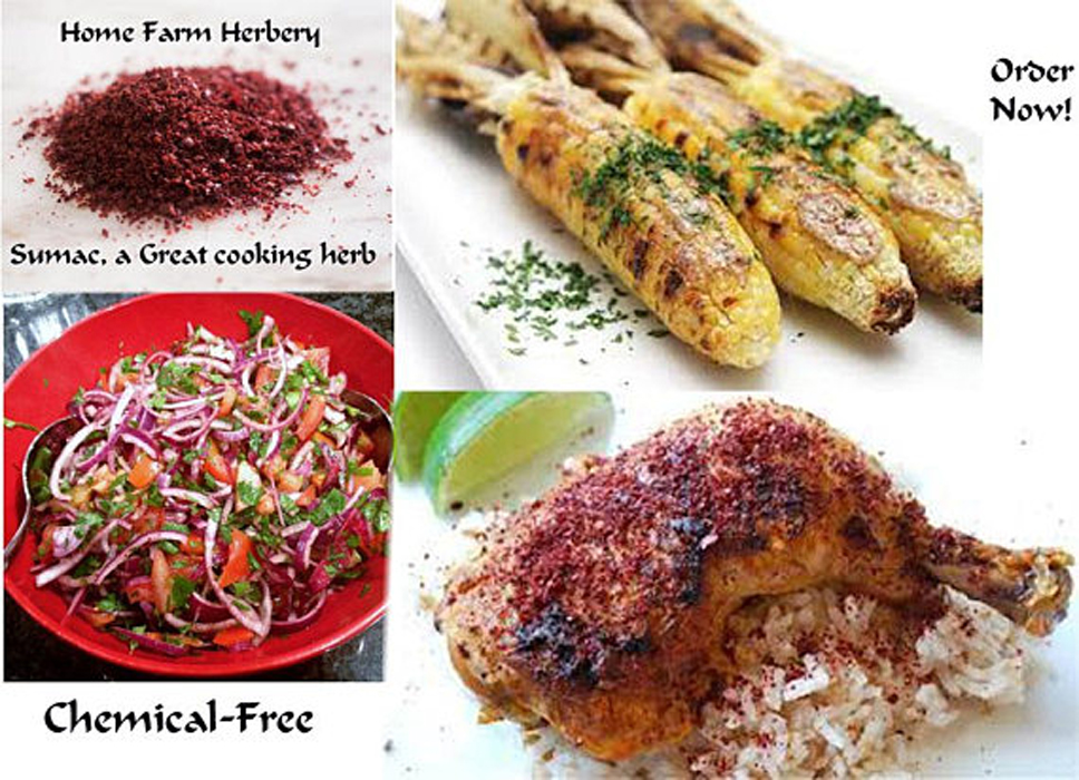 Sumac, a Great cooking herb, Order now, you will be glad you did & get a free gift!