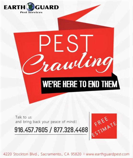 Got Pest?? Exterminate now!