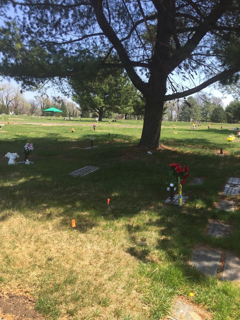 Burial Plots - 2