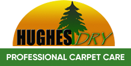 Carpet Cleaning Companies Roswell