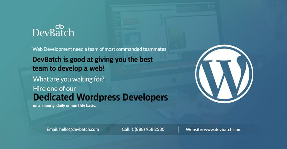 Hire Expert WordPress Developers at DevBatch