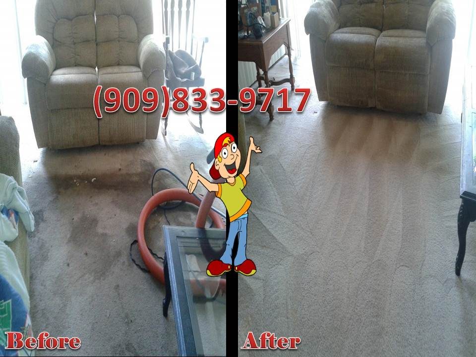 CARPET AND TILE CLEANING