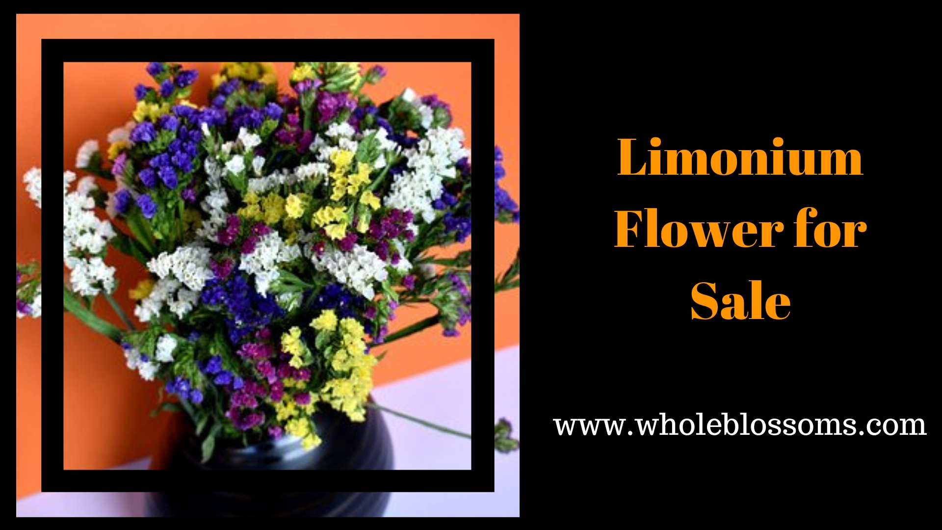 Purchase Gorgeous Limonium Flowers for Sale