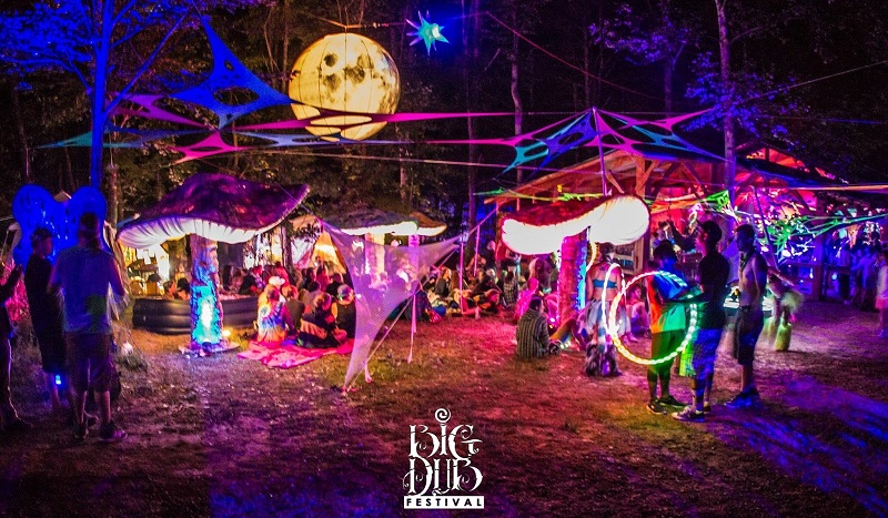Big Dub Festival Tickets Discount Code