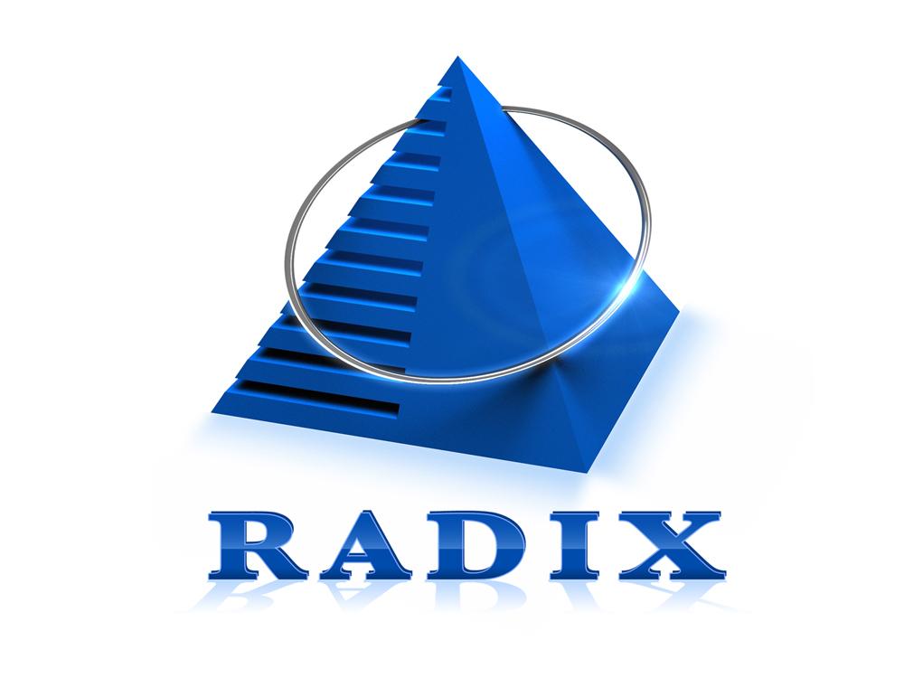Radixweb - IT Outsourcing & Custom Software Development Company USA