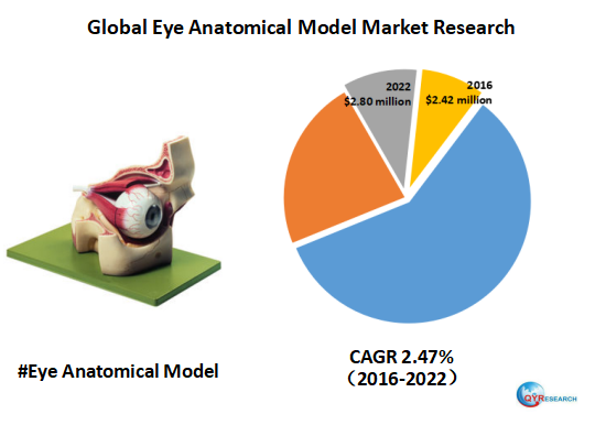 Global eye anatomical model revenue is expected to reach $2.80 million in 2022