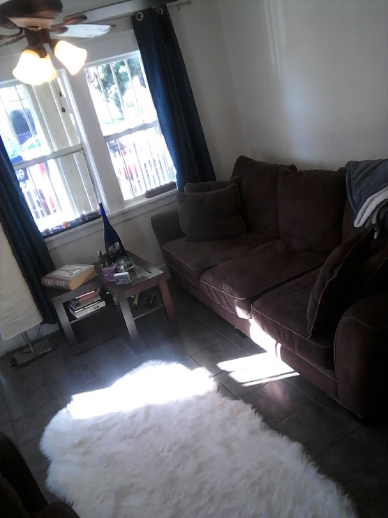 FREE Couch Living for Lots of Daily Cleaning, 7 Days a Week