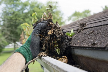 Clean Gutters Are Vital to Your Home