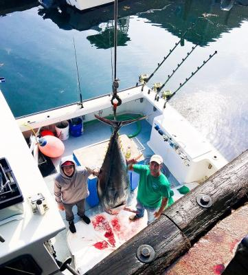 Wicked Tuna Charters | Kellyanncharters.com