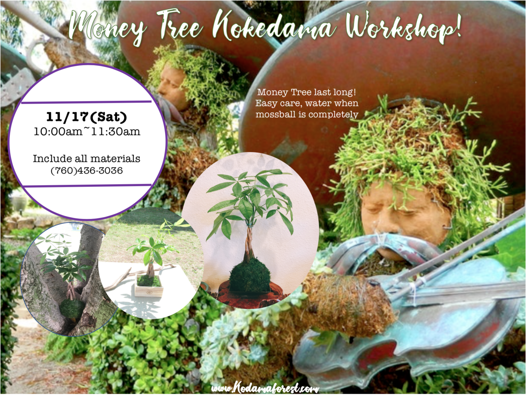 San Diego Botanical Garden - Kokedama workshop-