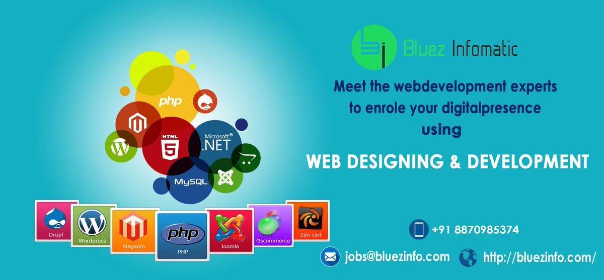 Bluezinfomatic is a leading software Developer in Tirupur