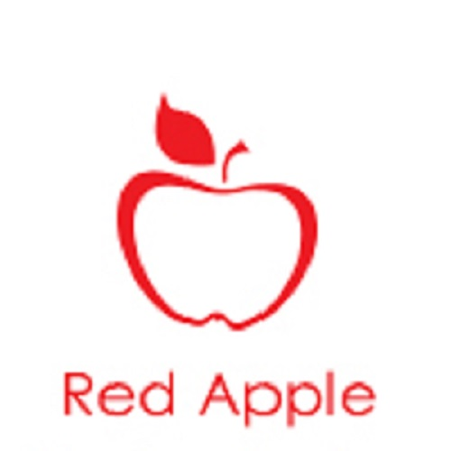 Discover the Best 2D Game Development Company - Red Apple Technologies