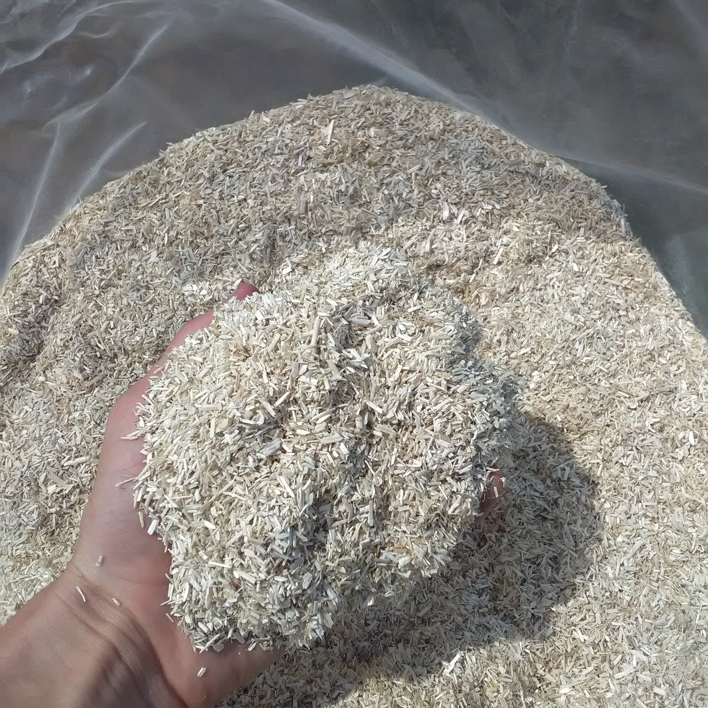Hemp Horse Bedding - Hemp Horse Shavings in Bulk - Columbia - USA