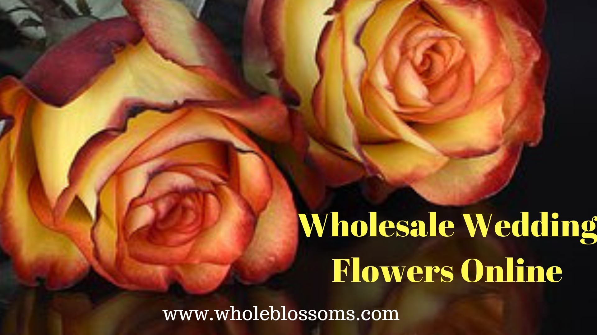 Buy Wholesale & Beautiful Wedding Flowers Online