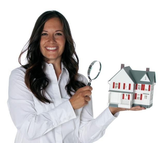Nelson Home Inspection LLC
