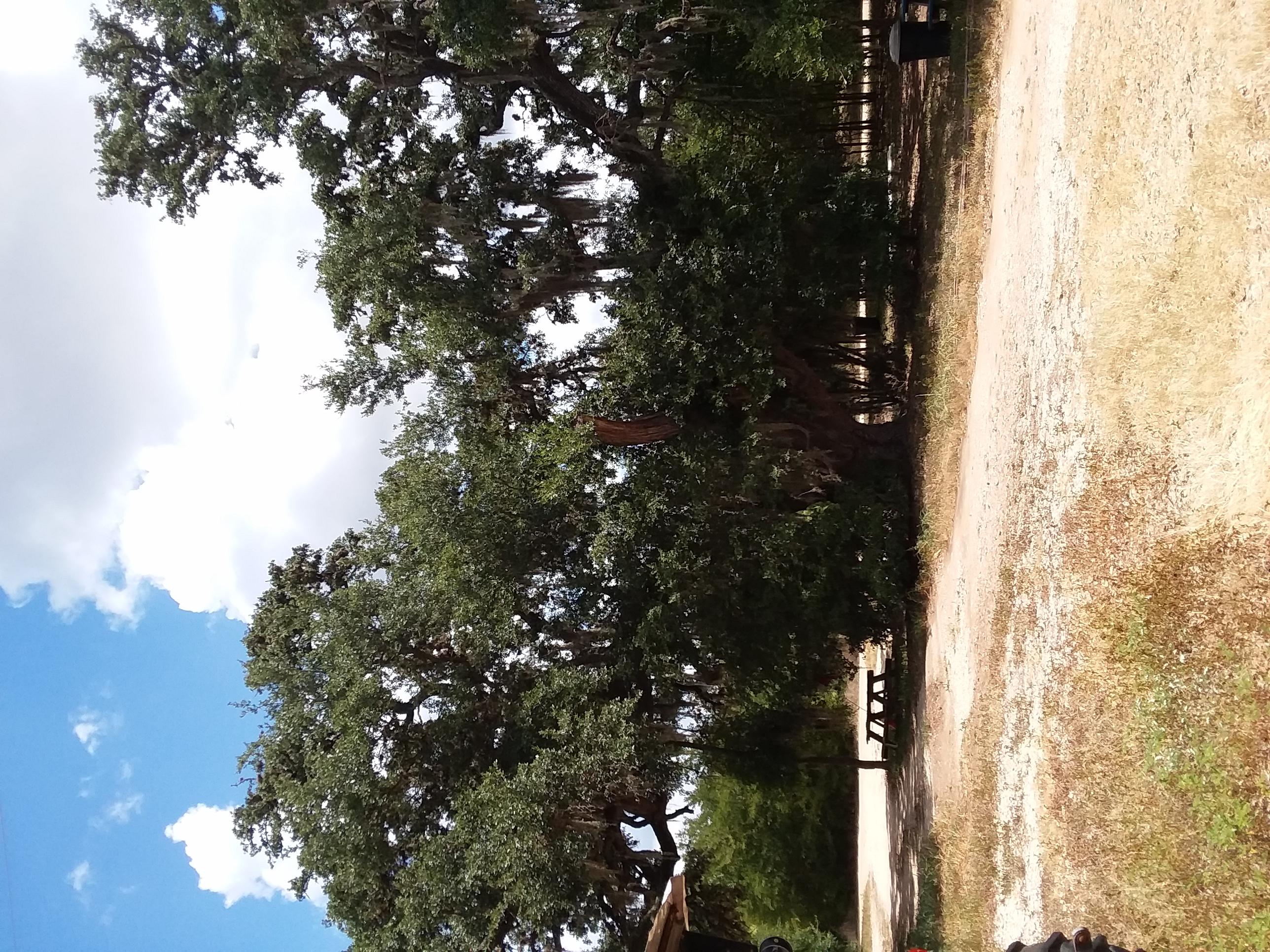 Trailer park rental
