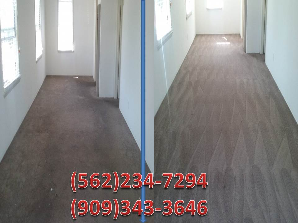carpet cleaning  tile and grout cleaning