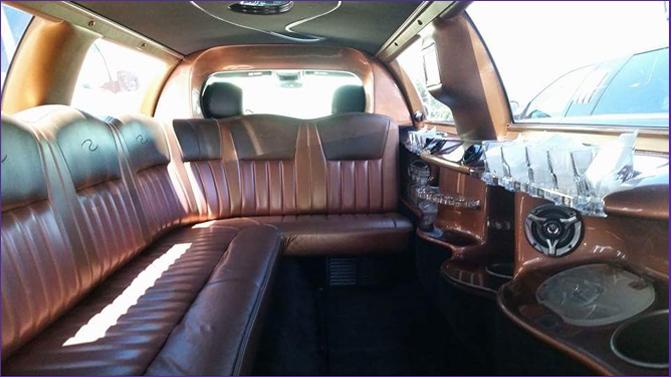 Leisure Limousine