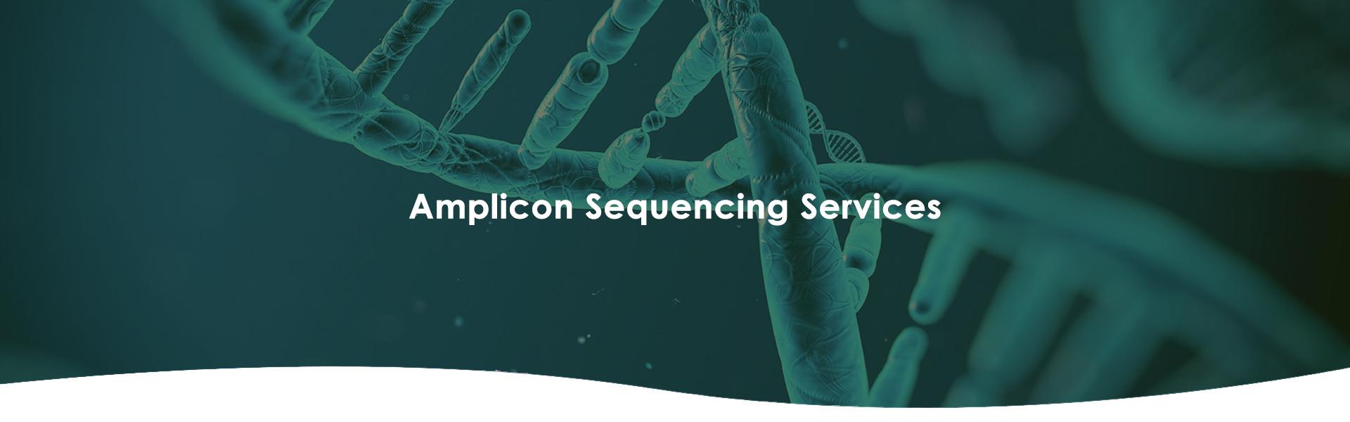Amplicon Sequencing