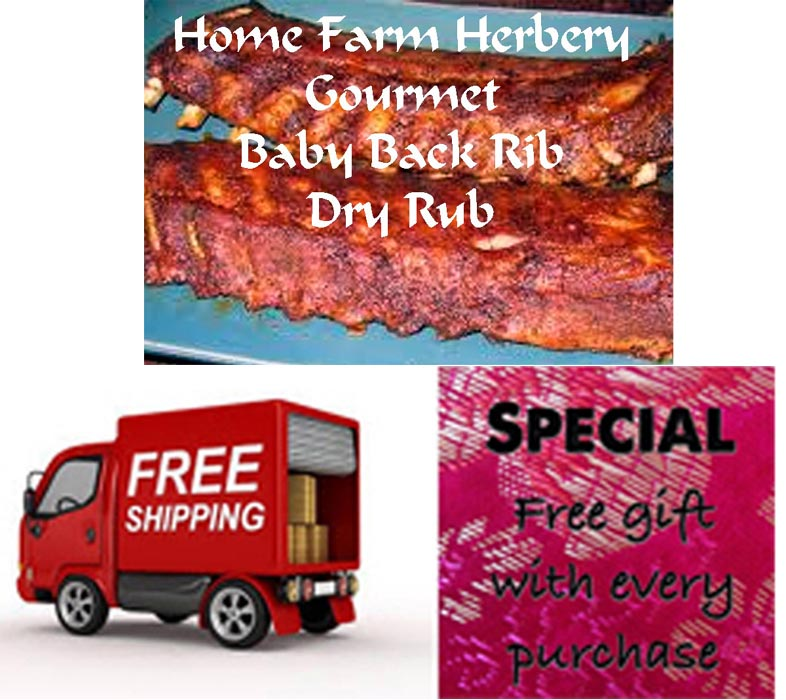 FREE shipping & a free gift  when you order the best Gourmet Baby Back Rib Dry Rub Now!