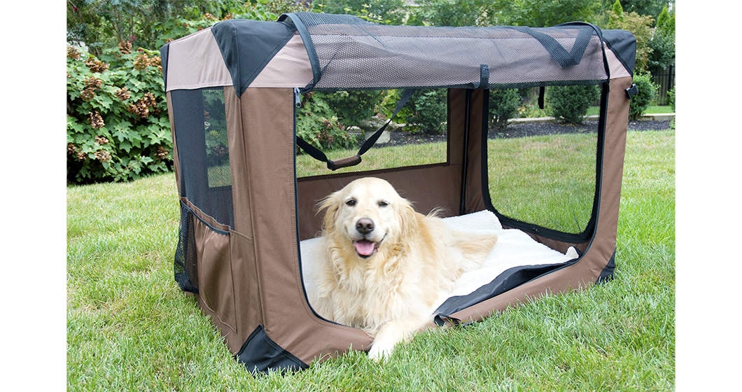 Wholesale Dog Products | Dog supplies - Wholesaleforstores