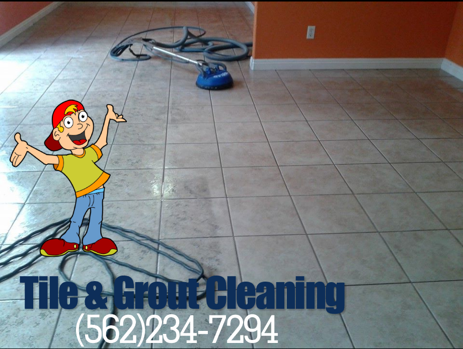 PROFESSIONAL CARPET CLEANING (909)833-9717