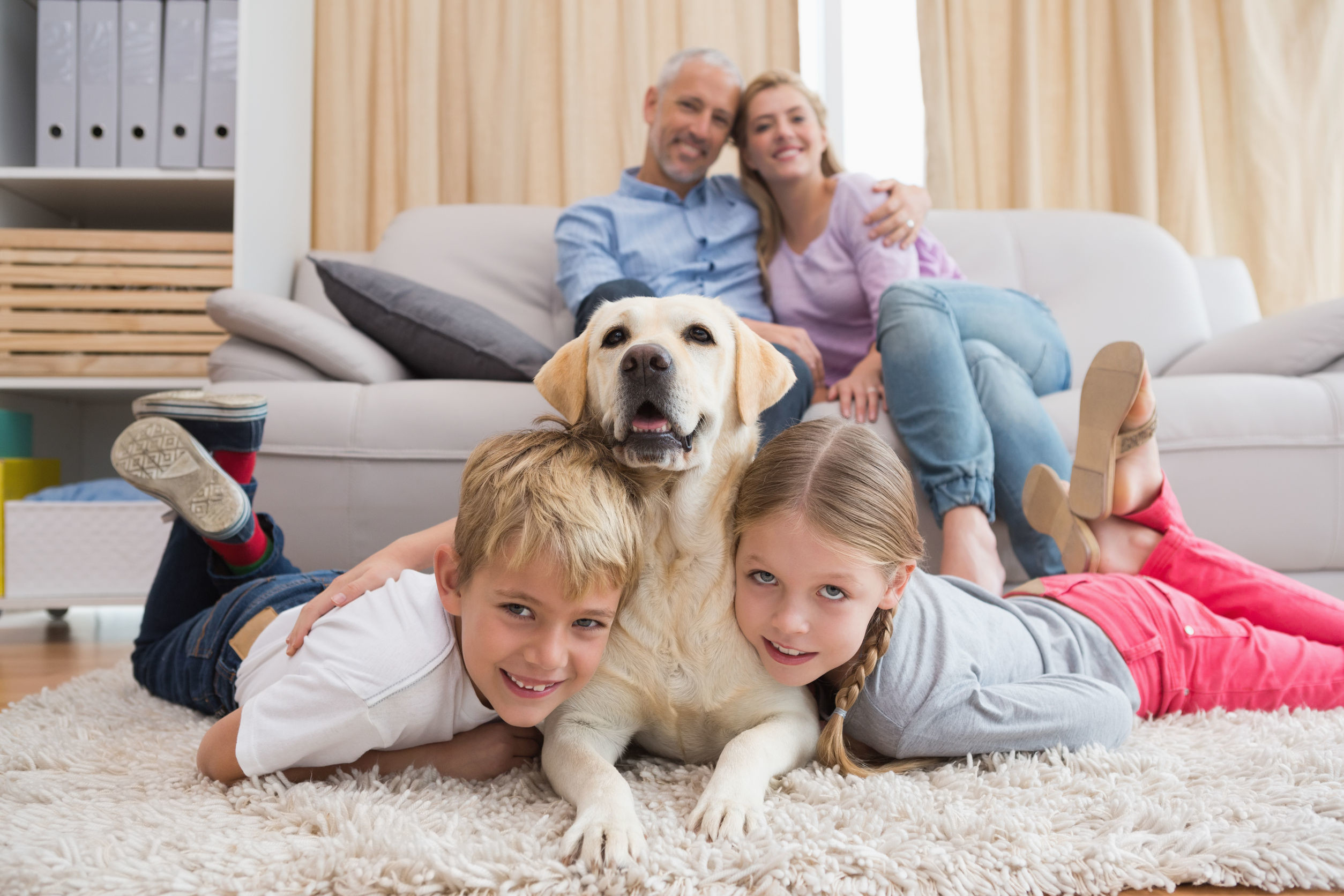 Eco Fresh Carpet Cleaning
