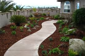 Save your money and water with our Drought Tolerant Landscaping