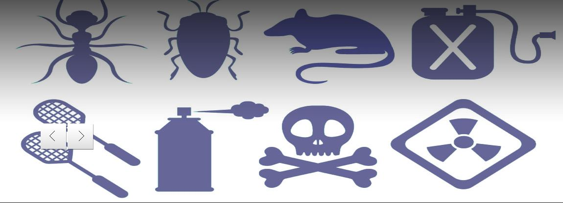 Summit Pest Control