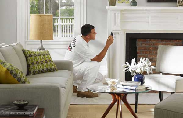 Interior and Exterior painters at lowest price