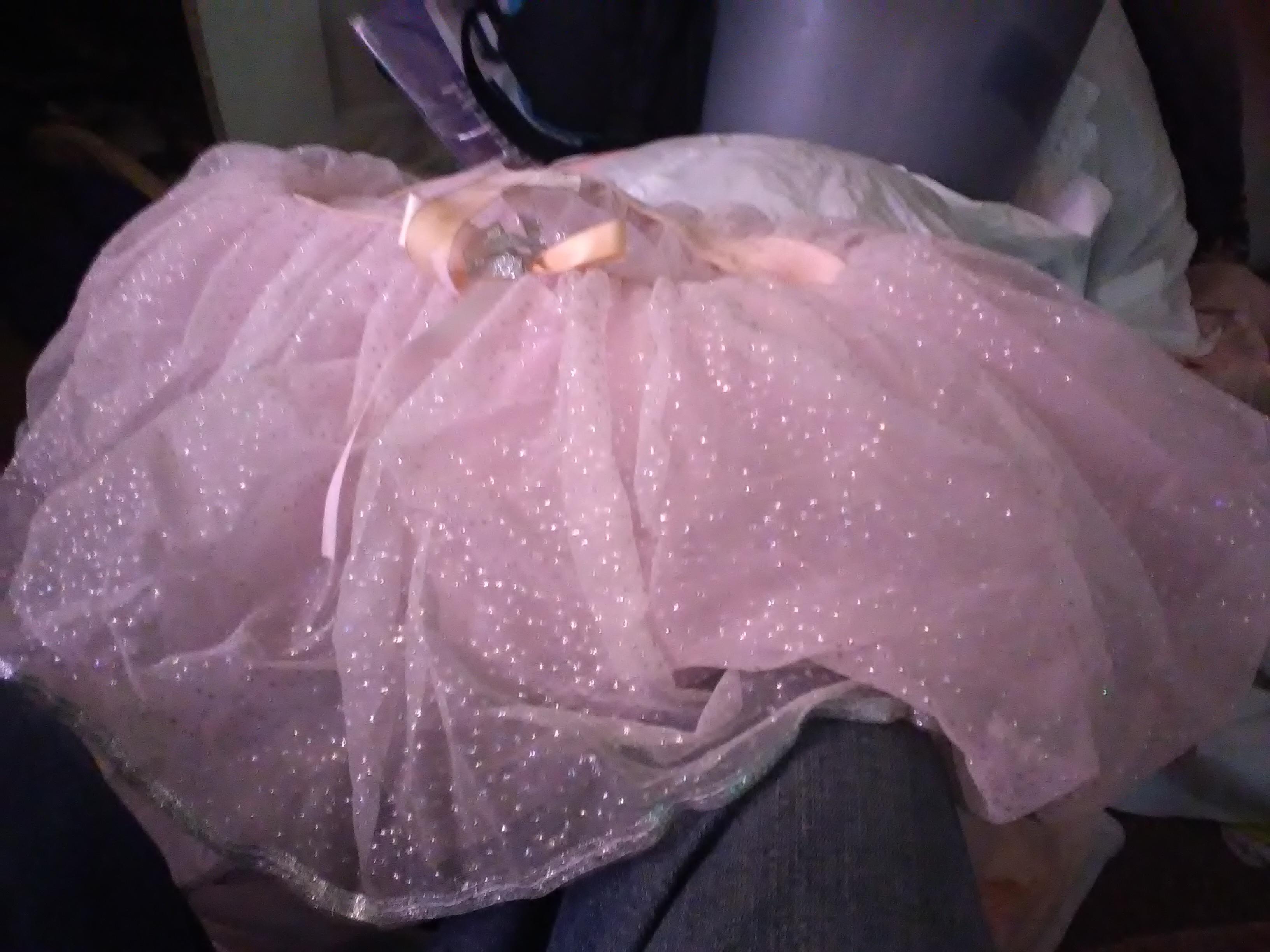 Little Ballerina Princess Dress