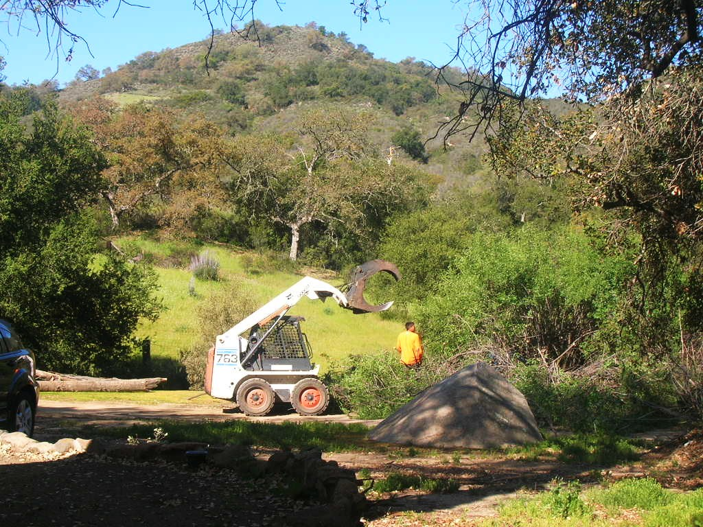 Expert Arborist Tree Service, Land Clearing, Bobcat Work