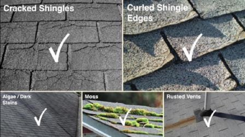 Vancouver Roofing