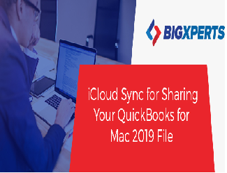 How does the new iCloud Drive functionality in QB Mac 2019 work