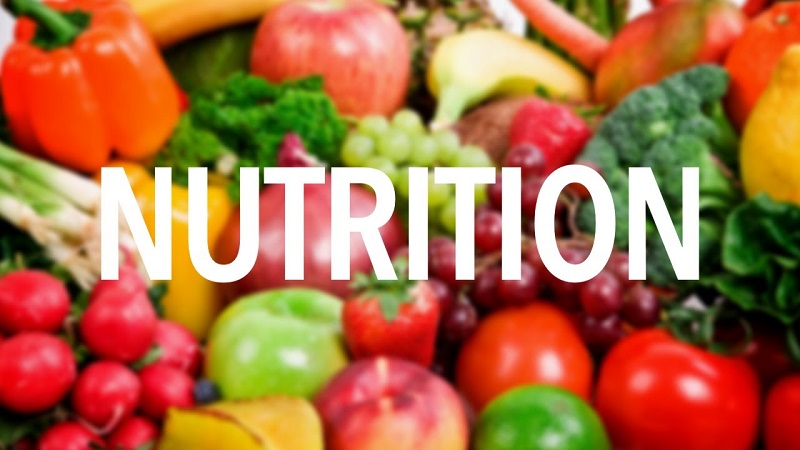 Know more about basic Nutrition Concepts | FreshSkin